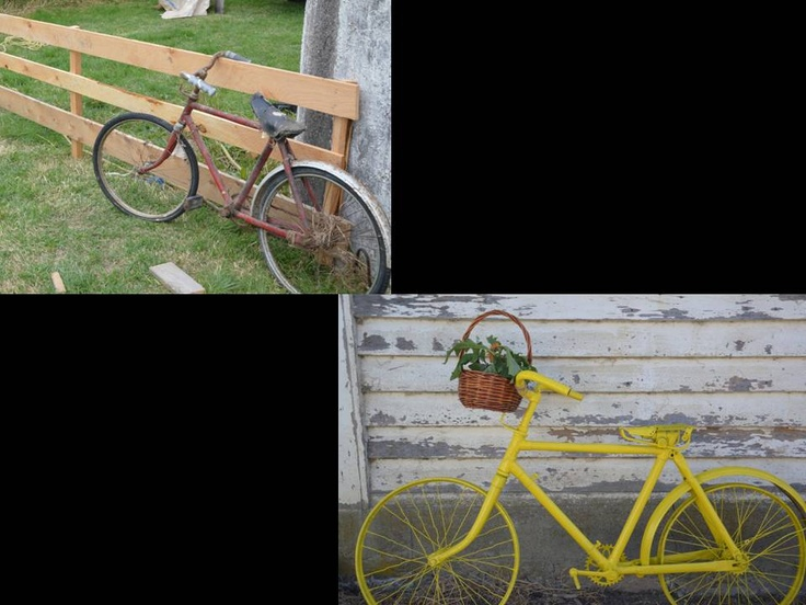 Old Bike = New Life!