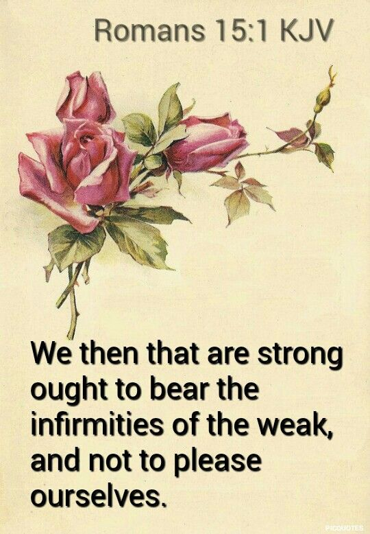 Romans 15:1 KJV  We then that are strong ought to bear the infirmities of the weak, and not to please ourselves.