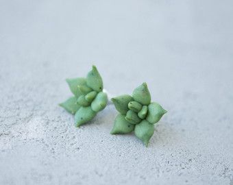 Check out Green Succulent Planter Stud Earrings Wholesale Small Hypoallergenic Studs Succulent Plants Succulent Jewelry Wedding Bridal Birthday Gifts on eteniren