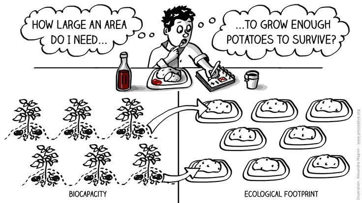Growing potatoes on Mars: Ecological footprint