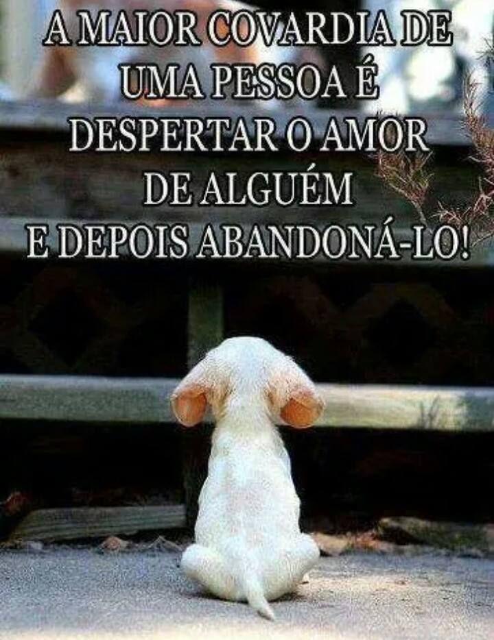 A maior covardia de uma pessoa é despertar o amor de alguém e depois abandoná-lo!