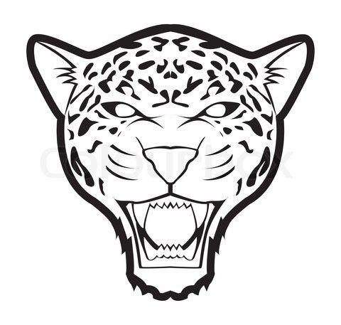 Mejores 10 imágenes de AnimalCity en Pinterest | Panthera onca ...