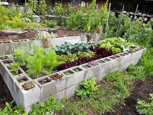 Cinder Block Garden Front Backyard Ideas Pinterest