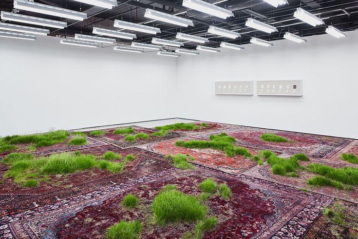 """""""Tenendo al suo lavoro come a un giardino, l'artista austriaco con base a New York Martin Roth, fa crescere l'erba all'interno delle fibre di tappeti persiani, irriga costan…"""