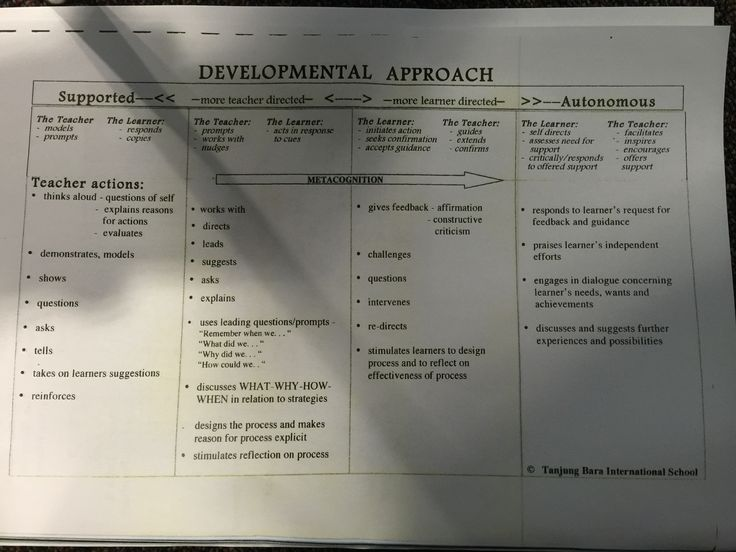 Continuum of developmental approach