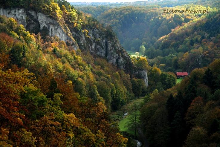 Ojcow National Park, Poland | photo by zielonatrawa.pl - Join us and discover Ojcow National Park - www.ojcow.pl