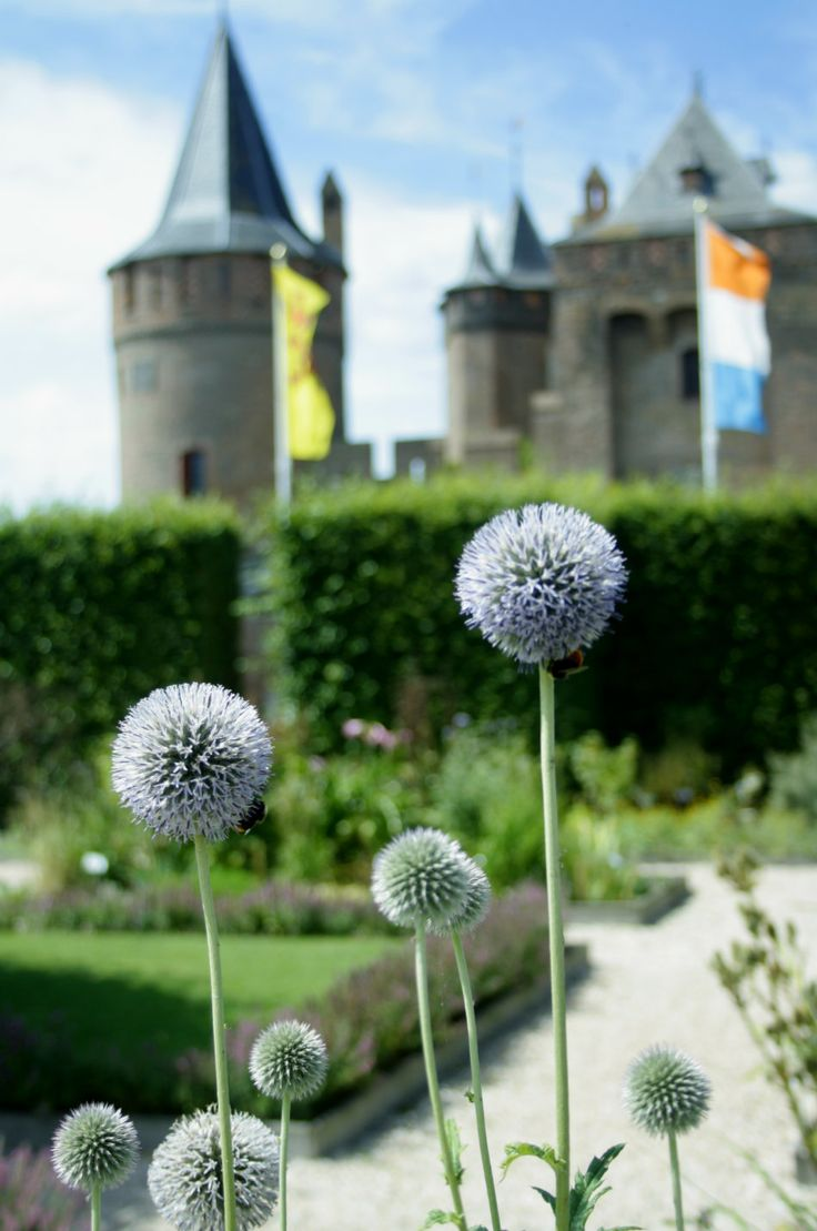 Muiderslot Castle, a day trip from Amsterdam, The Netherlands.