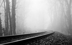 Black And White Tumblr Nature Pictures