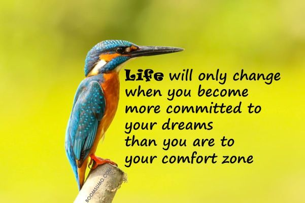 awesome Dreams Quotes: If You Are Comport Zone You Can't Achieve Dreams