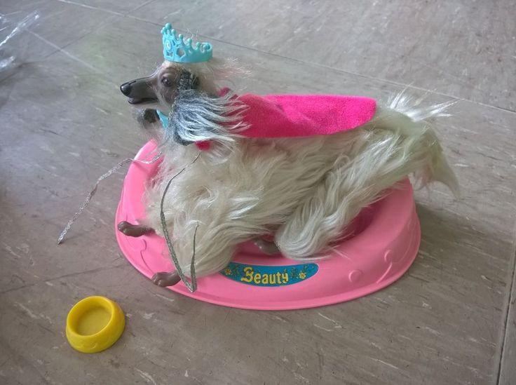 Barbie Hund Beauty / Afghaner / Weiss / mit komplettem Zubehör / WIE NEU