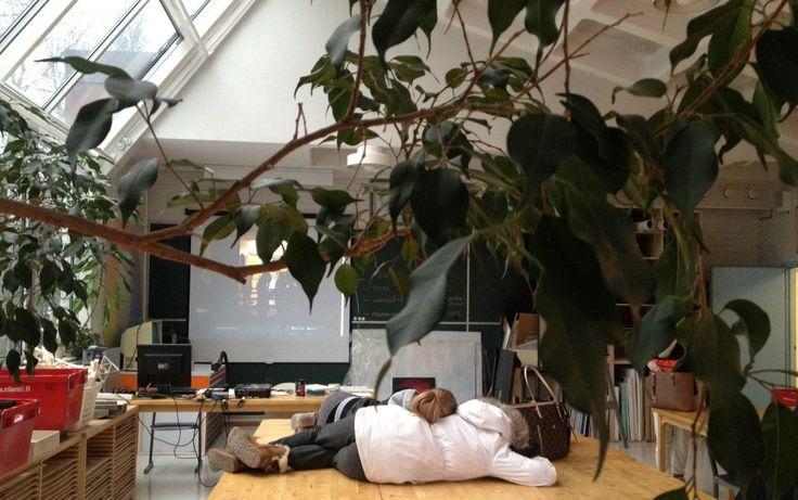 Kuvisarkea   Helsingin Rudolf Steiner -koulun kuvataideopetuksen oma paikka: kuvia, tekstejä, materiaaleja jne. matalalla kynnyksellä ja korkealla profiililla.