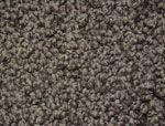 Carpet - all types