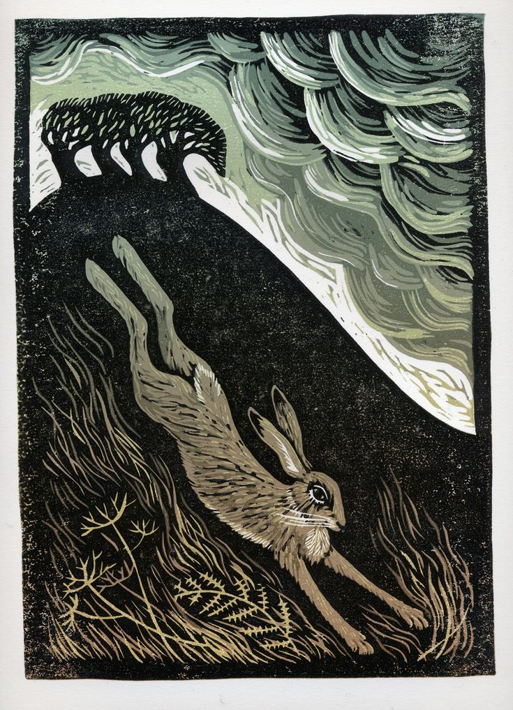 Reliefprint.: The Owl and the Hare by Tamsin Abbott
