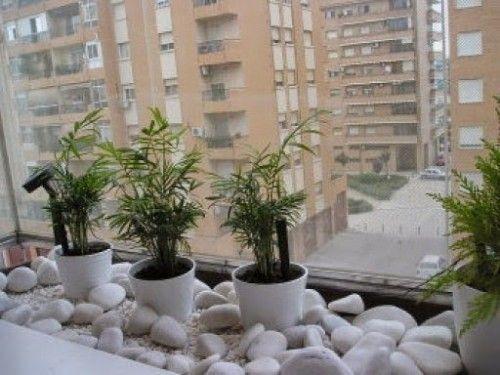 Piedras y plantas decoraci n de jard n plantas y macetas - Macetas de piedra para jardin ...