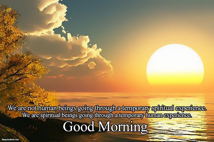 Top 25 Good Morning Love Quotes For Him: Best 25+ Love Good Morning Sms Ideas On Pinterest