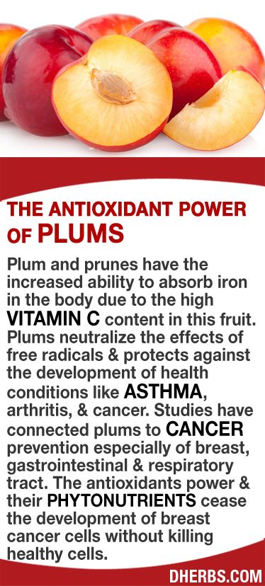 Plum and prunes have the increased ability to absorb iron in the body due to the high vitamin C content in this fruit. Plums neutralize the effects of free radicals & protects against the development of health conditions like asthma, arthritis, & cancer. Studies have connected plums to cancer prevention especially of breast, gastrointestinal & respiratory tract. The antioxidants power & their phytonutrients cease the development of breast cancer cells without killing healthy cells. #dherbs…