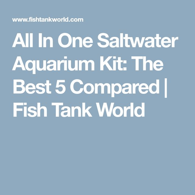 All In One Saltwater Aquarium Kit: The Best 5 Compared | Fish Tank World