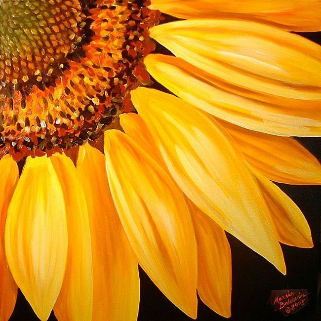 sunflower paintings | Sunflower No.9 - by Marcia Baldwin from FOTM Sunflowers art exhibit