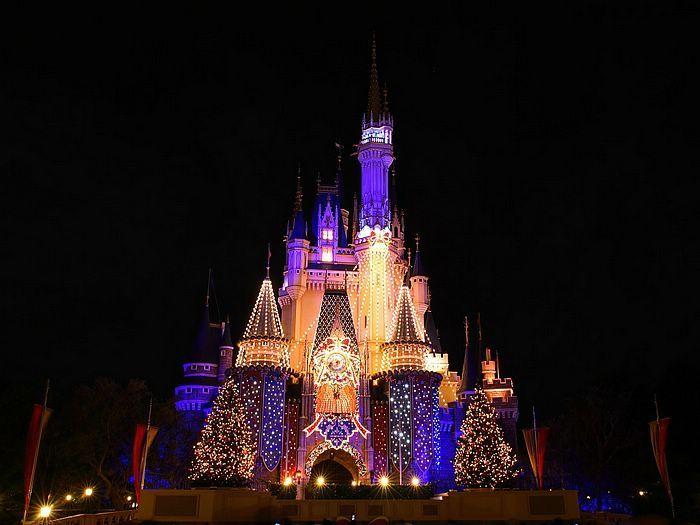 light displays   Christmas Holiday Yard Light Displays Christmas Light Clips Christmas ...