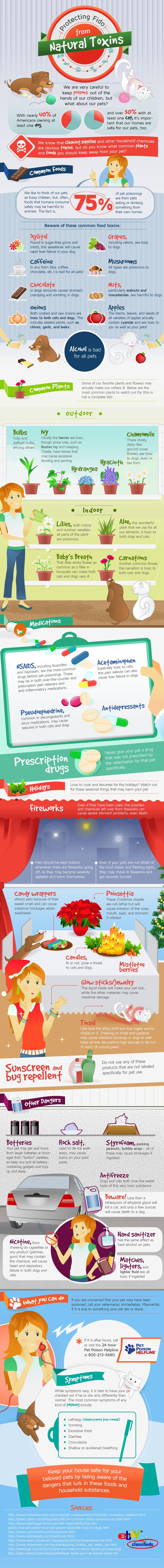 Protecting Fido From Natural Toxins #infographic