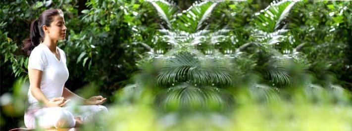 What is Meditation? Informative website on Meditation