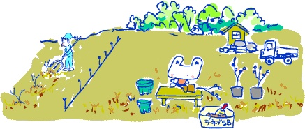 ~自然の休憩所~ Berry's Life うっかり日記 2007年3月19日(月)晴れ 農園日和。少し寒がもどったというウワサだけど、農園は春の臭いがする。ブルーベリーの新芽もピンク色で愛らしい。時々しか農園に行かないので、なかなか進まない鉢増しをした。根鉢に雑草の根が巻いているのでそれを取り除くのに時間がかかる。ベリー公さんはお店の段取り打ち合わせでここのとこバタバタしていたけど、今日から農園南側のサザンハイブッシュ園の植え付けにかかったようだ。  帰りに農園近くの市場でケーキ用のイチゴや野菜の買い出し。「白菜菜」という白菜の花らしい菜花を発見。見た目は菜花そっくり。お浸しにしてみると、菜花のようなクセはなく、あっさりして美味しかった。 http://berryslife.com