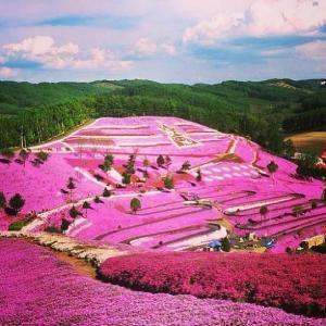 Hokkaido Japan by maria.t.rogers