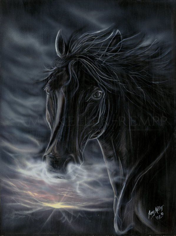 """Realism by Amy Keller-Rempp Art. """"Black Night"""", 16"""" by 24"""", acrylic on wood. Amy loves horses, she painted that one when she was frustrated about life, and the result is stunning ;-). Original sold, available and very popular in giclee print and fine art cards."""