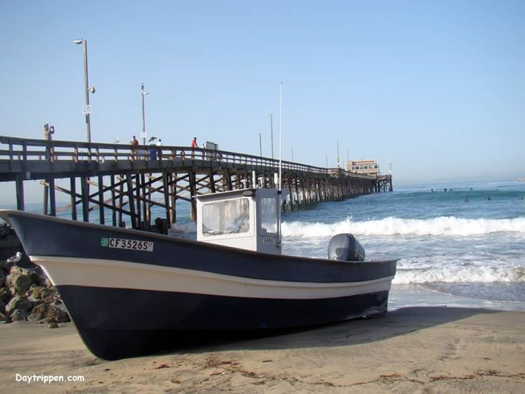 27 best a place to fish images on pinterest fishing for Newport pier fishing