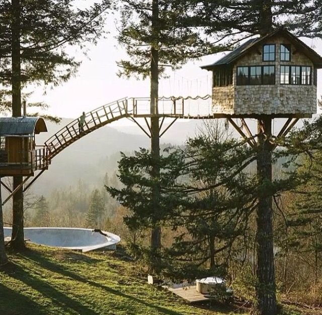 A Beautiful Tree House High Up In The Trees. Dream It And It Can Be
