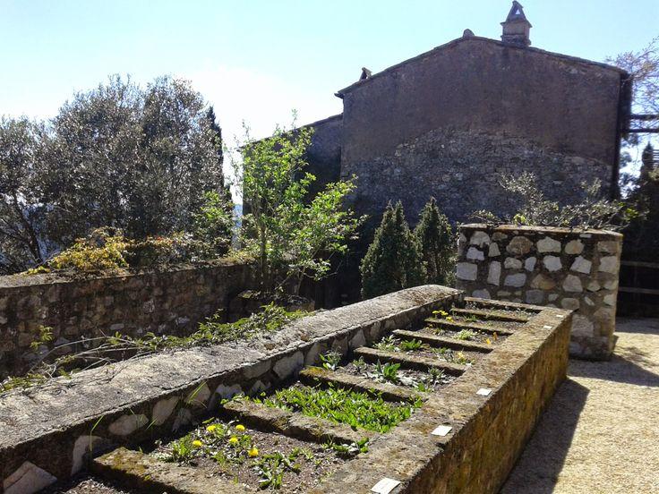 Particolare della struttura interna dell'Orto dei Semplici Elbano, Rio nell'Elba 6 Aprile 2015
