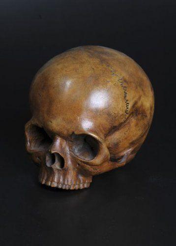 Crâne en bois naturel. Allemagne, XVIIIe siècle. photo Delorme - Collin du Bocage