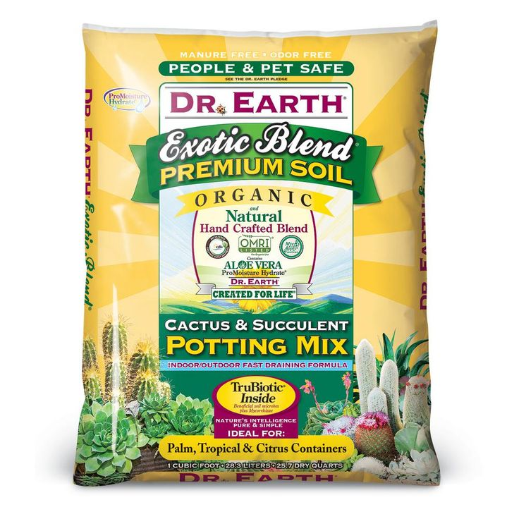 1 cu. ft. Exotic Blend Cactus and Succulent Potting Mix