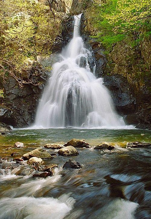 Erikli Waterfall - Tesvikiye-Erikli, Yalova, Turkey