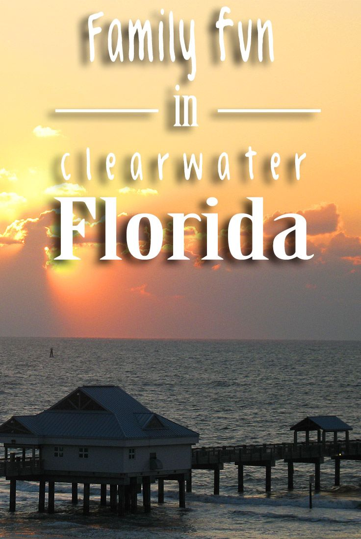 Best 25 clearwater florida ideas only on pinterest clearwater beach clearwater beach florida and clearwater tampa