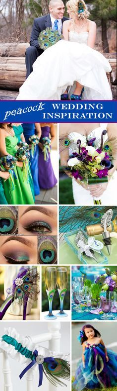 Peacock Wedding Inspiration Board - love the combination of royal blue, green, turquoise and purple!