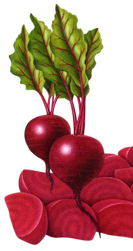 Realistic beets