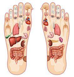 Ak si budete masírovať tieto body na nohách pred spaním, účinky sa dostavia ihneď