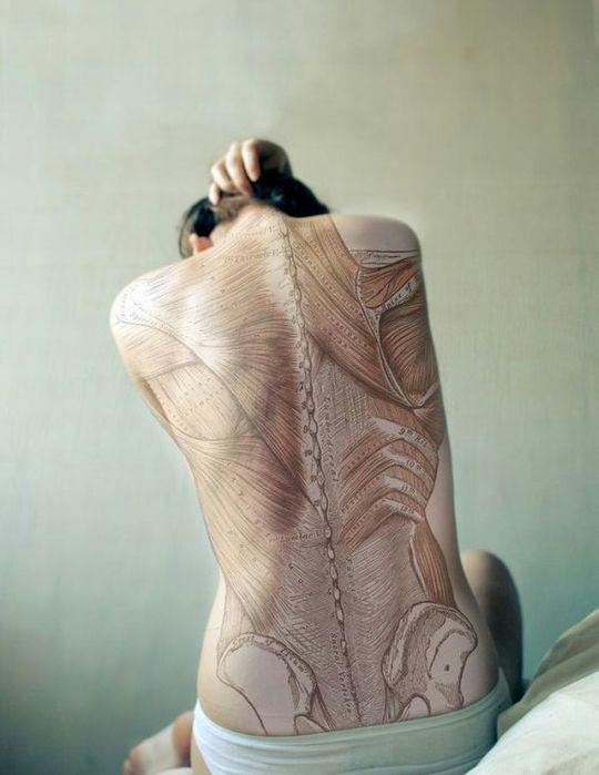 Татуировки анатомические. Обсуждение на LiveInternet - Российский Сервис Онлайн-Дневников