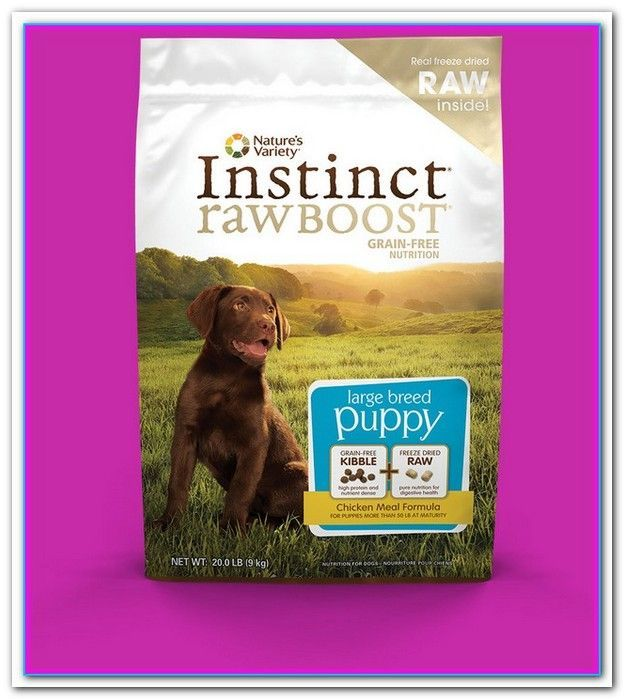 Best Holistic Dog Food For Puppies The Best Organic Dog Foods