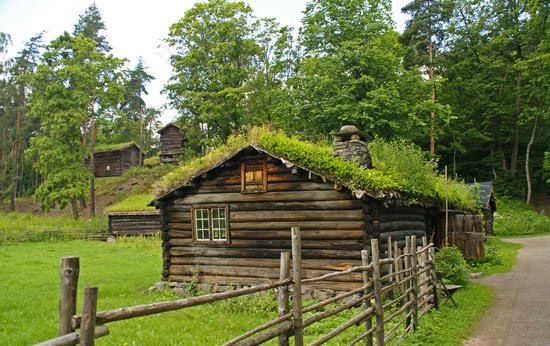Зеленые крыши Скандинавии - Зеленые крыши Европы - Зеленые крыши - Гелерея - САД НА КРЫШЕ