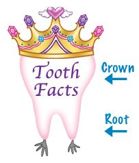 The Real Tooth Fairies® - Official Real Tooth Fairy Dentist - Pediatric Dentists who specialize in caring for Earthie Teeth