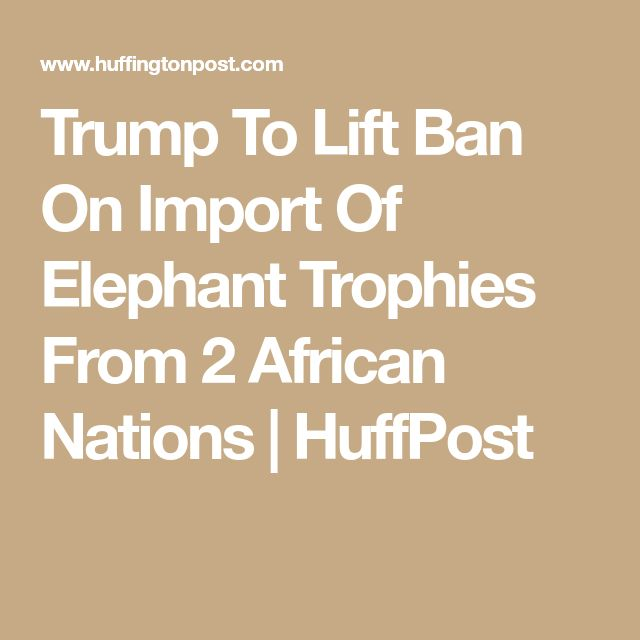 Trump To Lift Ban On Import Of Elephant Trophies From 2 African Nations | HuffPost