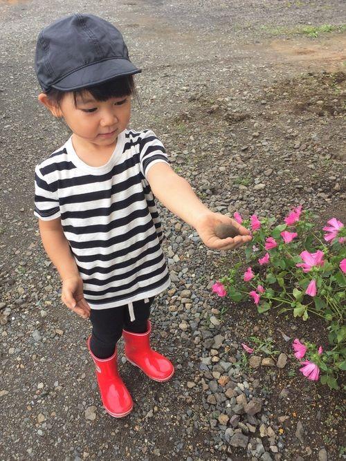 泥んこあそび☆ まさか外で泥んこすると思わず着せてた 服たちは、花粉を付けてお洗濯。 花粉って、取れ