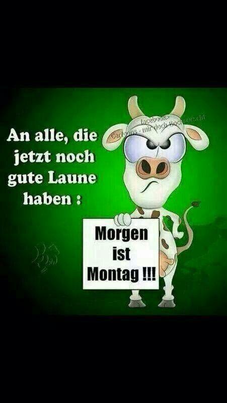 moin  moin , alle schon fit ? - http://guten-morgen-bilder.de/bilder/moin-moin-alle-schon-fit-270/