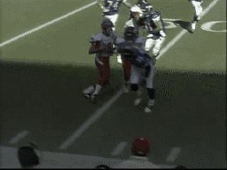 jaredsrustledjimmies:  Sean Taylor layin' the hit stick! He was a true player, a beast on the field.