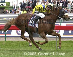 Quentin J. Lang Photography - Melbourne Cup - 2002 Media Puzzle