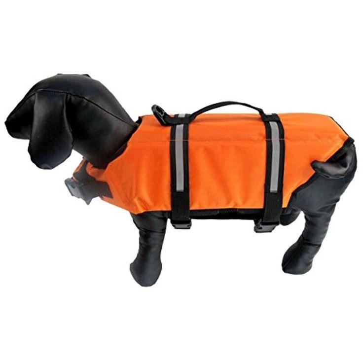 orange safety vest for dogs