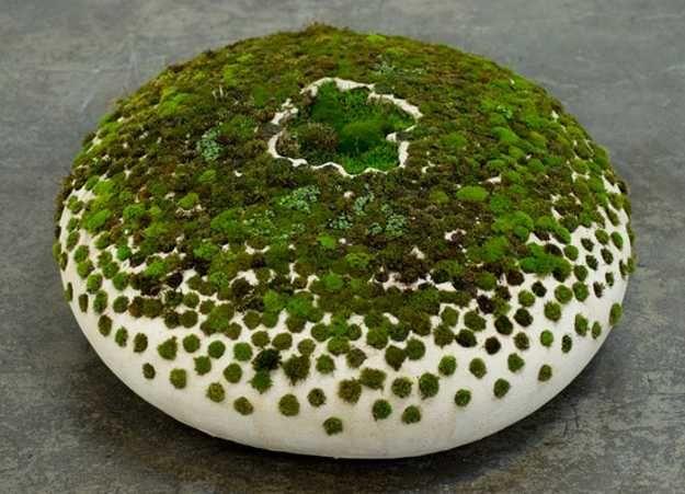 Moss on Ceramic 2009 by Mineo Mizuno