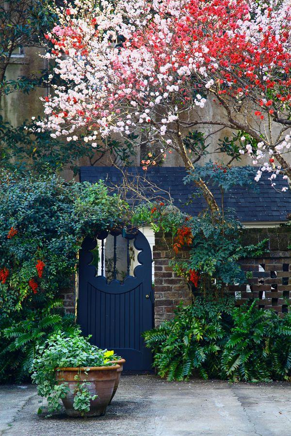 Spring In Full Swing, Courtyard Garden, Water St, Charleston, SC / via Doug's photoblog